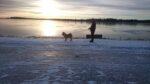 Vacker solnedgång vid havet i Hörnefors